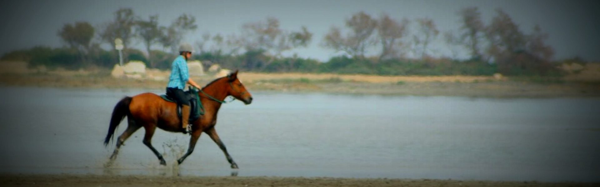 Juste avec mon cheval